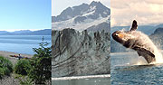 Let us help you plan your Glacier Bay trip!